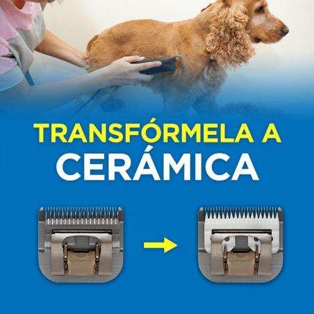 Afilado y Transformación a Cuchilla de Cerámica